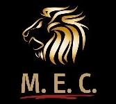 Partner von M.E.C.-Check methodisch   exklusiv   clever