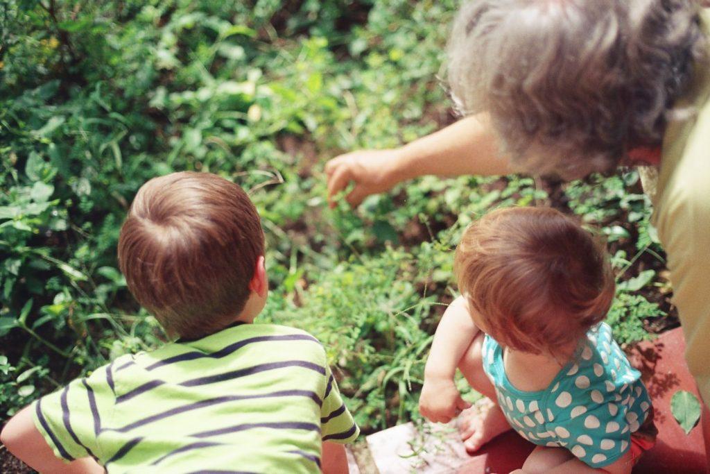 Eine Oma verbringt mit ihren beiden Enkeln im Kleinkindalter Zeit im Garten.